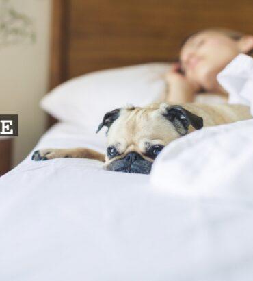 Sängyllä ja patjalla on väliä