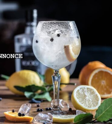 5 Fascinating Facts about Brands of Gin
